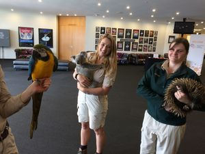 VIDEO: Would these Caloundra singers turn your chair?