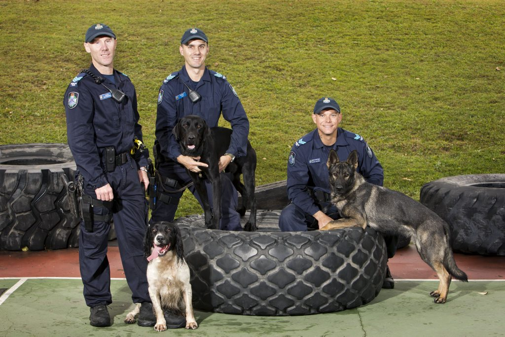 The newest doggie recruits to the Queensland Police Service with their handlers.