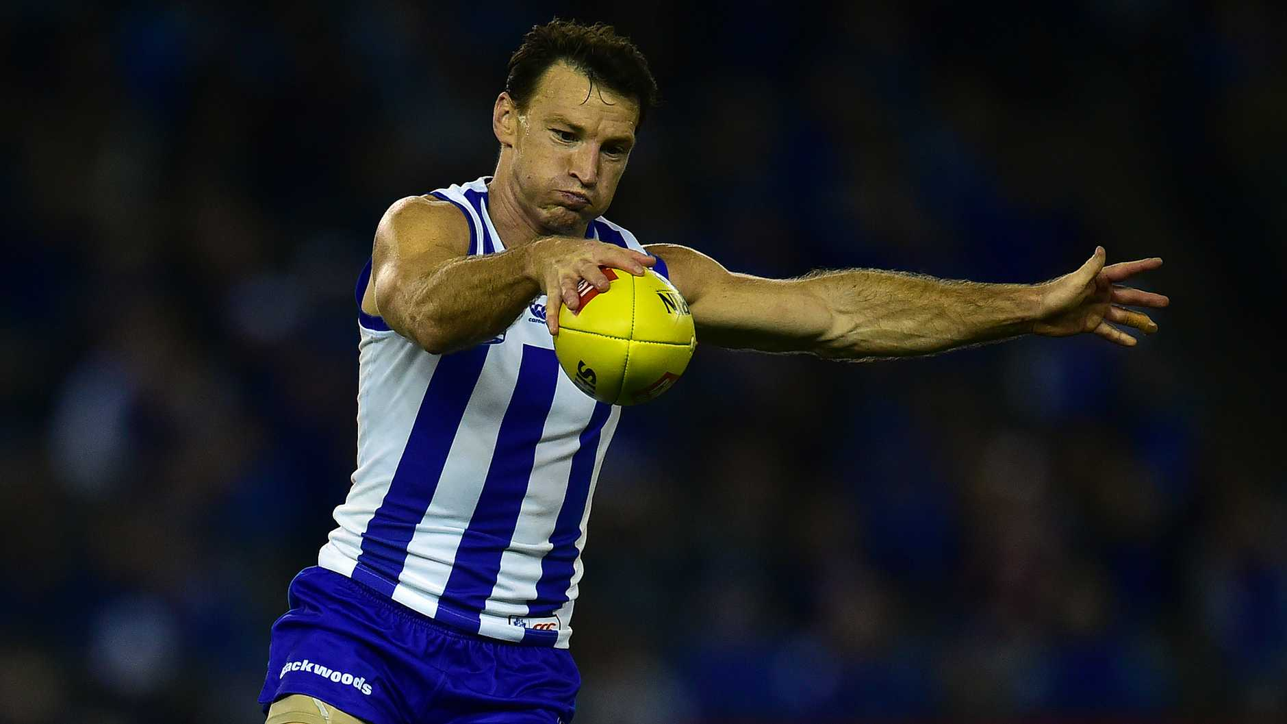 North Melbourne champion Brent Harvey will tonight play his 400th game ... and there should be plenty more to come.
