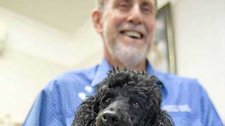 WHAT'S ALL THE FUSS: Herriot House Veterinary Surgery vet Peter Noble talks about ways to stop your dogs from barking.