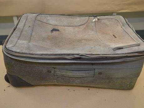 The suitcase that a child's remains were found in on a motorway in South Australia.