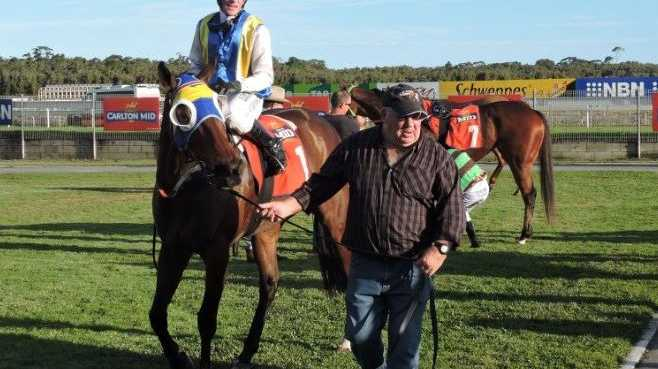 Stable foreman Garry Coleman leads Shazza's Bubbles and Robert Thompson back to scale after a thrilling win in the Sawtell Cup.