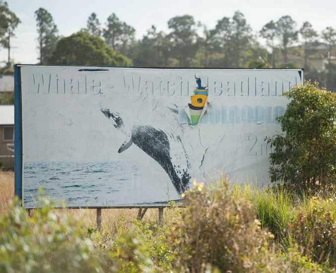 PIECE OF THE PUZZLE: The Chamber of Commerce is working to promote Woolgoolga as a tourist destination.