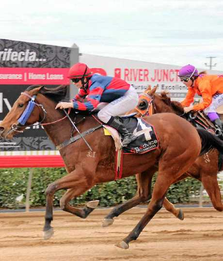 ALMOST THERE: Race 3, winner number 4, Foregone with jockey Kelly Gates sprint for the line.