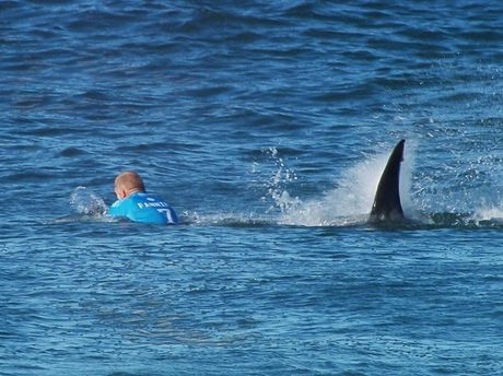 In this image made available by the World Surf League, Australian surfer Mick Fanning is pursued by a shark, in Jeffrey's Bay, South Africa, Sunday, July 19, 2015. www.worldsurfleague.com