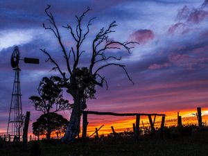 15 reasons to be glad you live in the Bundaberg region