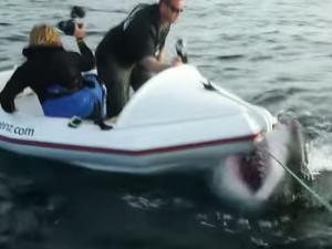 WATCH: Footage of 'mega shark' attacking boat resurfaces