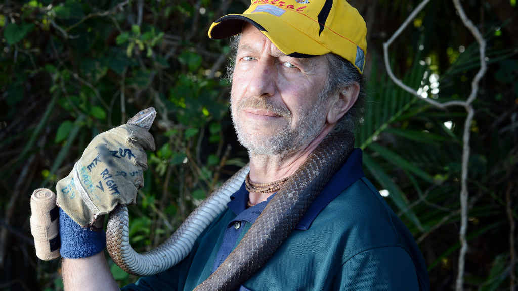10,000 SNAKES: George Ellis, snake handler from Byron Bay's Snake Patrol with a brown snake.