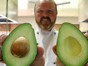 Creative avocado dishes starting to take shape