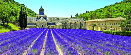 Scenes like the Abbey of Senanque's blooming lavender flowers in Provence, France, go flashing by as you travel on the TGV.