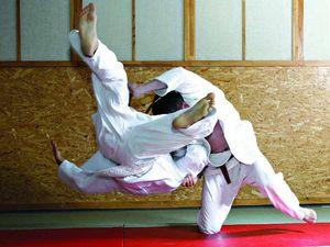 WHY NOT TRY: Get on the mat for an aikido session