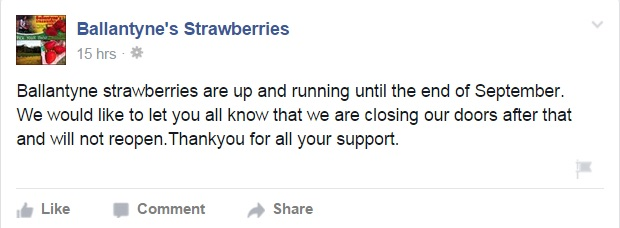 Ballantyne's Strawberries' message on their Facebook page.