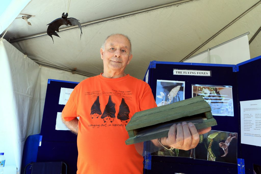 BAT MAN: John Parsons from the Fraser Coast Micro Bats Group. File picture.