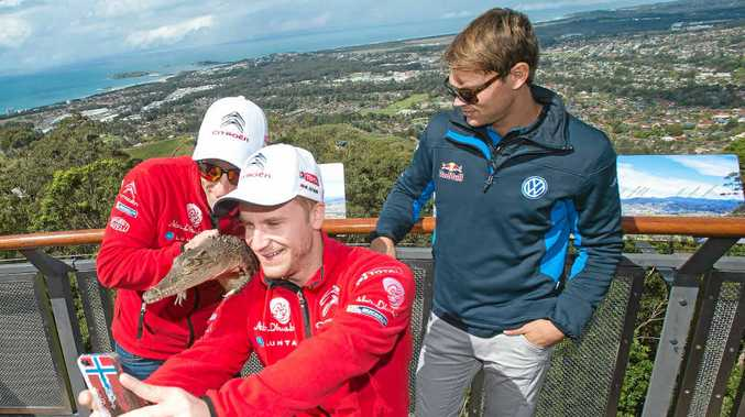 GREATEST VIEW: World Rally drivers Kris Meeks, Mads Ostberg and Andreas Mikkelsen take in the view at Sealy Lookout.