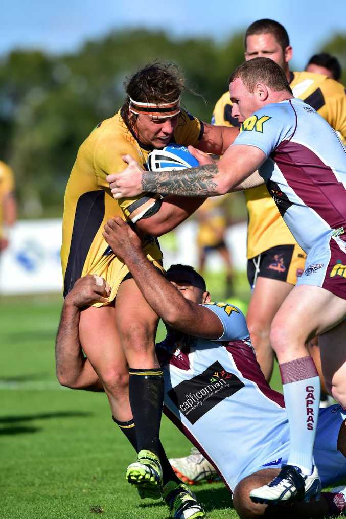 GREAT SUPPORT: Vantage homes have extended their sponsorship with the Sunshine Coast Falcons.