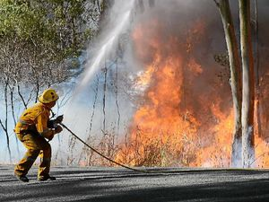 Do you have a survival plan ready for bushfire season?