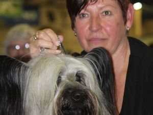 Dudley's a hair's breadth away from show ring glory