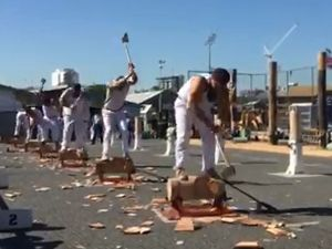 Wood chopping at the Ekka