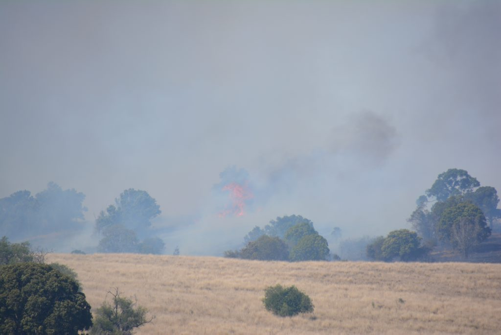 HIGH WIND: Flames are reaching four to five meters high. Photo Katherine Morris / South Burnett Times