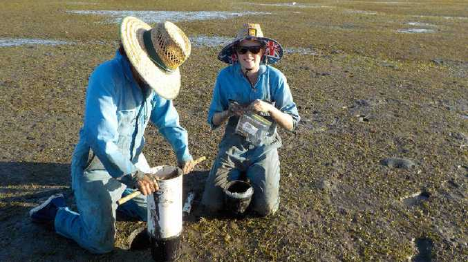 GET INVOLVED: Scientist Dr Emma Jackson studies seagrass and is now offering you a chance to help her make a difference.
