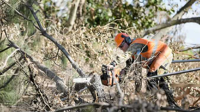 CLEANING UP: Australian Army Corporal Jaik Weston operating a chainsaw to clear and remove debris at the Kershaw Gardens after Cyclone Marcia hit the region.