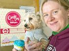 CUPCAKE DAY: Toowoomba RSPCA shelter manager Cassie Ellis preparing for Cupcake Day with pooch Cocobear.
