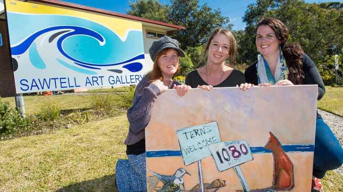 ARTISTIC CONSERVATION: Raising awarenss for the Little Tern through art. Trevor Veale
