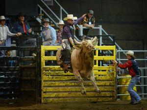 Tuff Bull - Rockhampton