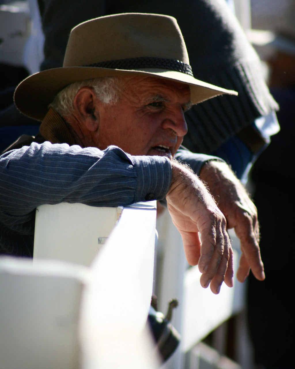 LEGEND: Happy Davis of Brushgrove, taken at the Big River Campdraft in Grafton.