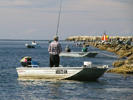 Shooters and Fishers party is pushing for the establishment of a recreational fishing authority.