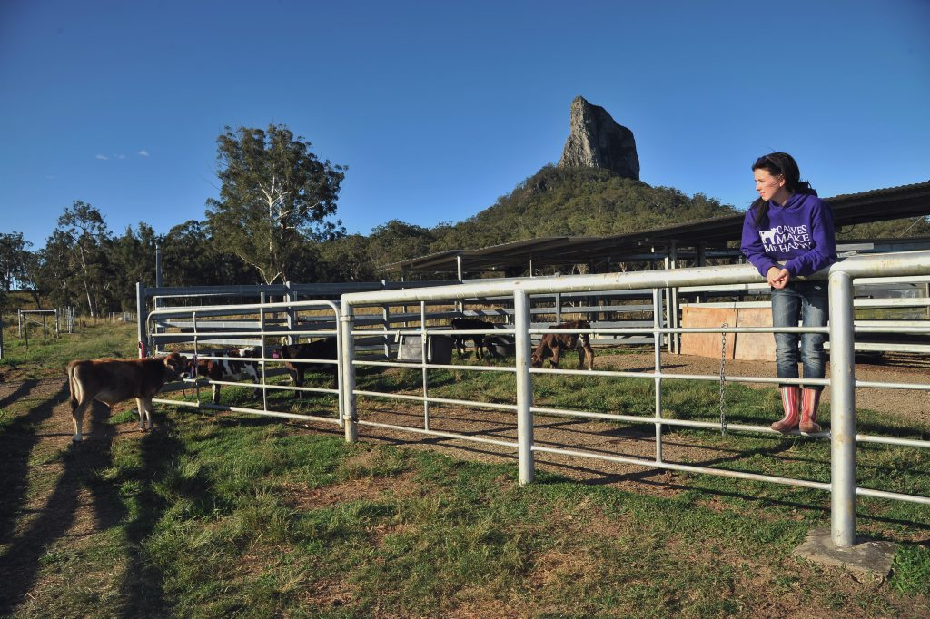 20 year old Kirby Woods overseeing the property where she raises her saved calves. Photo Greg Miller / Sunshine Coast Daily