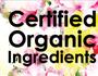 Mario and Meg care about healthy hair at organic Noosa salon