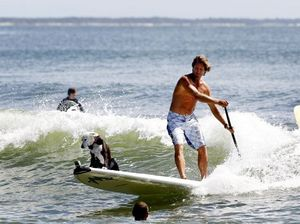 Dog-eat-dog for entries into Noosa Festival of Surfing