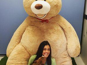 Giant teddy bear to help launch National Op Shop Week