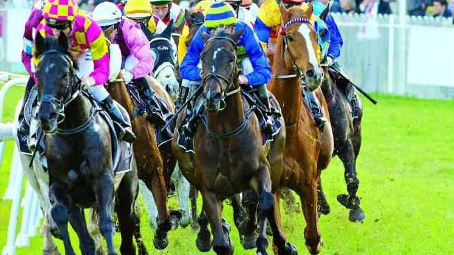 TRACK SIDE: Racing returns to the Grafton Racecourse today, heralding an exciting year ahead for local race goers.