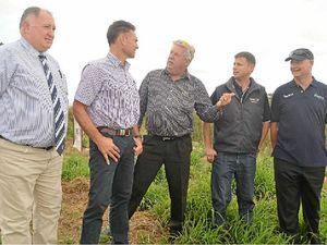 New Lockyer Valley program to help grow farm profits