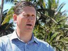 Springborg faces fight of his life in LNP showdown