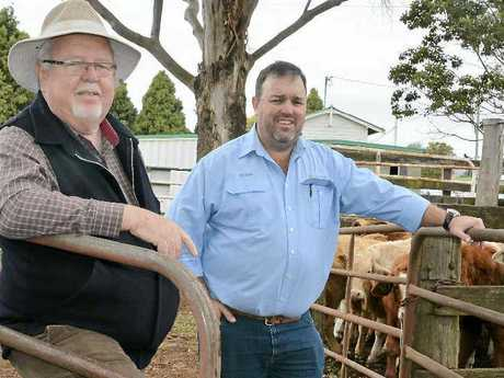 FAMILY FARMERS: Senator Barry O'Sullivan and his son Barry O'Sullivan were on the hunt for cattle at the saleyards in Toowoomba.