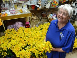 Dalby generosity blooms for Daffodil Day