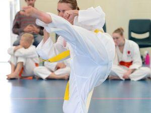 Karate gradings