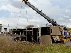 36 cows now safe after fatal livestock truck rollover