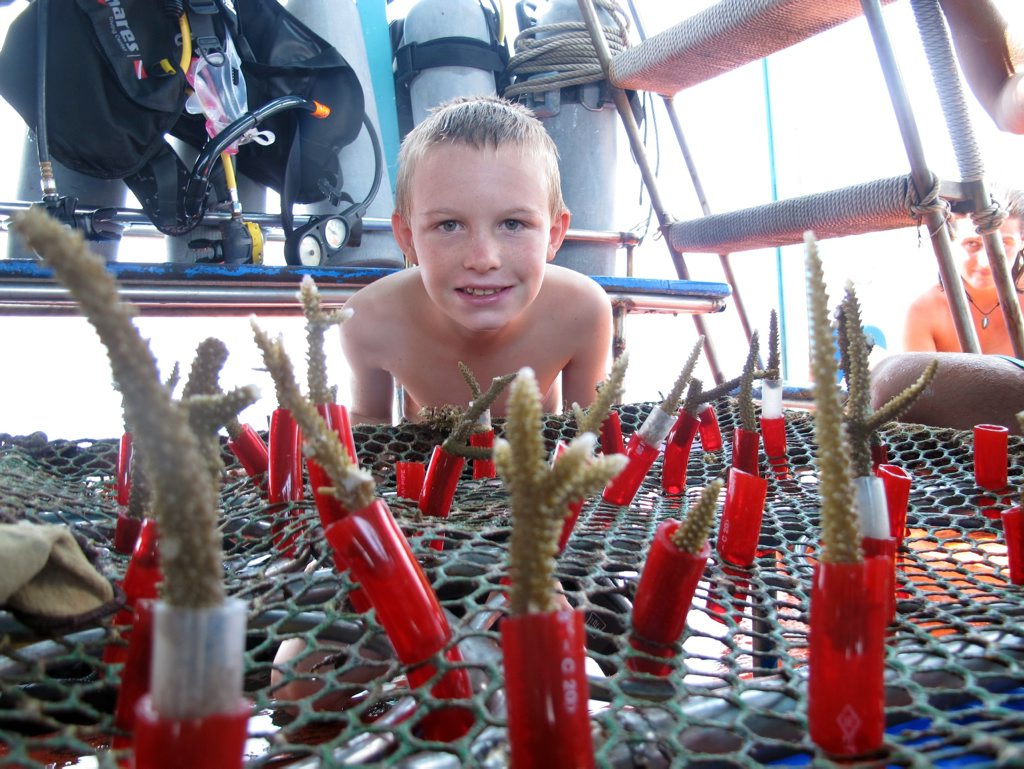 OCTOPUS'S GARDEN: Kailash Cook with part of the coral planted for the artificial reef.