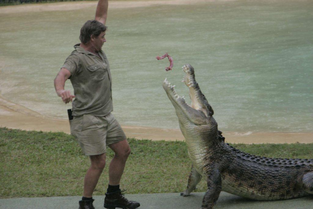 06/04/05 141952 Steve Irwin feeds a crocodile at Australia Zoo. Photo: Chris McCormack
