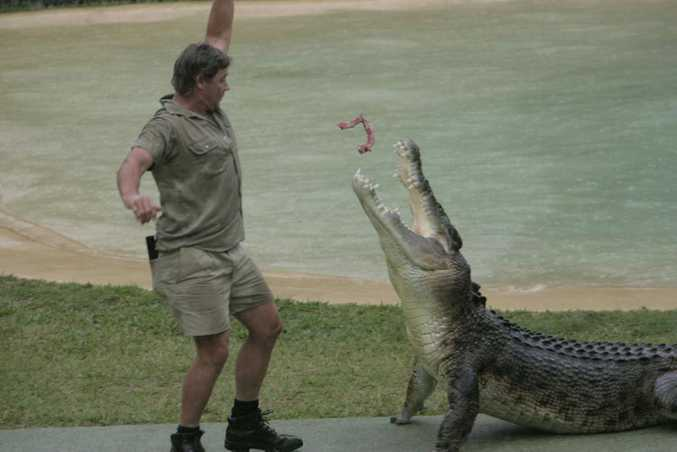 06/04/05 141952 Steve Irwin feeds a crocodile at Australia Zoo. Photo: Chris McCormack