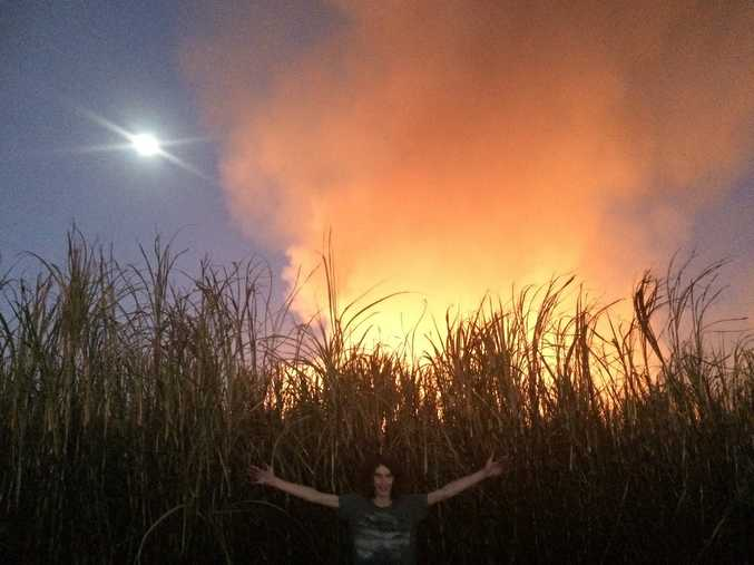 Paul Stanley-Jones' son, Harry, standing before the canefire at Woodburn on August 28.