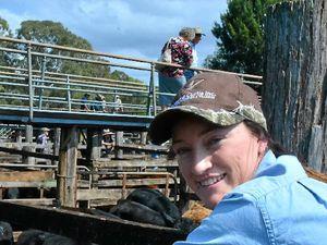 'Cattle whisperer' looks for a change of scene