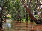 SUMMER ON THE CONDAMINE: Helen Robinson snapped this shot of the Condamine River in summer.