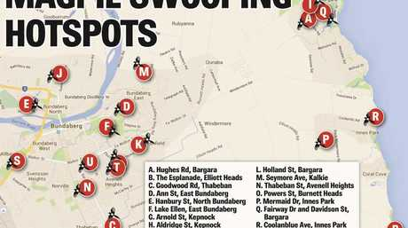 A map of the magpie hotspots in Bundaberg.