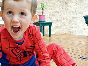 Police examine car in search for missing boy William Tyrrell
