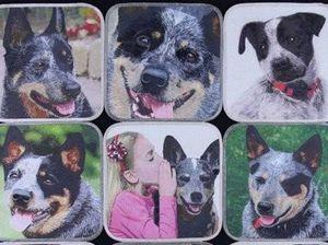 Man's best friend inspires true blue quilt